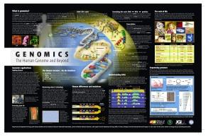 pdf available at www.jgi.doe.gov/education/posters.html